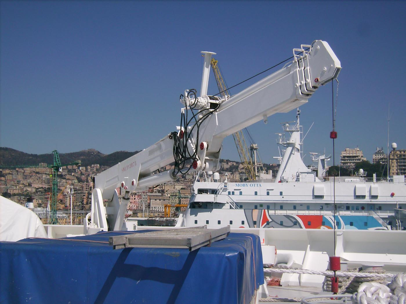 Avvenente Genova-2