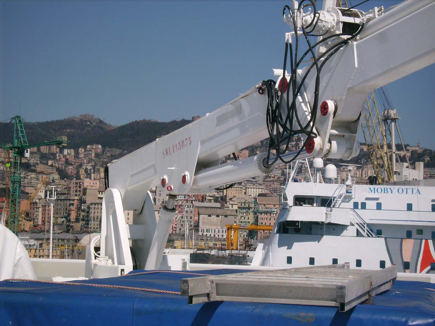Avvenente Genova-3